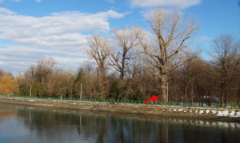 Plop – Parcul Central din Târgu Jiu