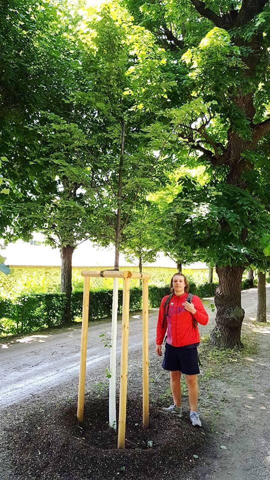 Parcuri360 la Viena